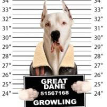 great dane growling t-shirt mens t-shirts dogs mugshot t-shirts mug shirt dog pets tshirt pet lovers