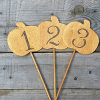 10 Rustic Wooden Pumkin Table Numbers, Rustic Fall Wedding Decor, Autumn Wedding, Wedding Centerpiece