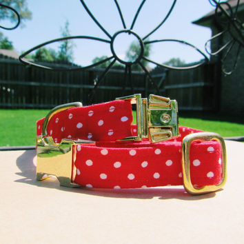 Red polka dot dog collar, Girl dog collar,Red dog collar, Summer dog collar, 50's dog collar, gold dog collar