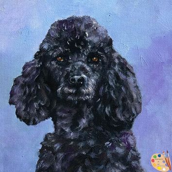 Black Poodle Dog Portrait 531