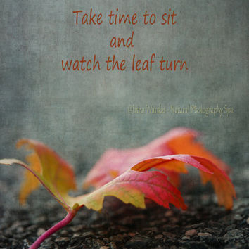 Fine art photo 'Falling Leaf', 5x7 print, Autumn foliage colors, motivation quote, wall decor, gift for her