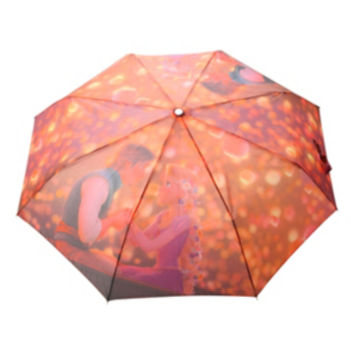 Disney Tangled Boat Compact Umbrella