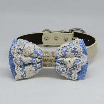 Blue Dog Bow Tie collar, Lace and Burlap, Some thing blue, Handmade dog collar, Blue Lace bow tie