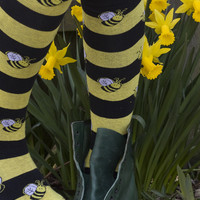Bumble Bee Knee High - Sock Dreams - Unique Colorful Socks