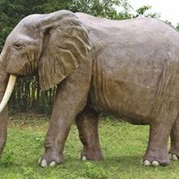 Animal Statue | Enormous African Elephant
