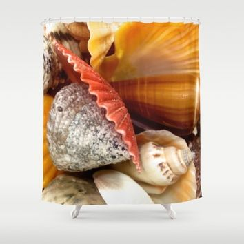 Seashells Shower Curtain by UMe Images