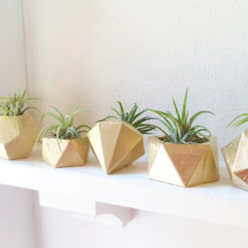 Gold geometric mini planter collection, set of geometric air plant holders, book shelf planter, desk planter