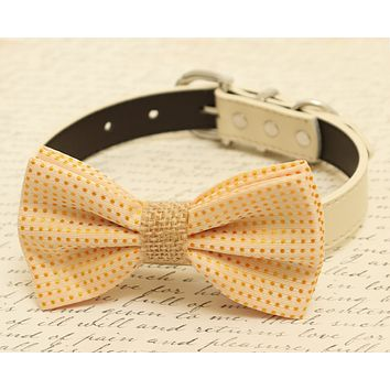 Cream polka dots dog bow tie attached to dog collar, Burlap bow tie, pet wedding accessory