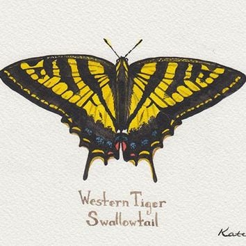 Western Tiger Swallowtail Painting