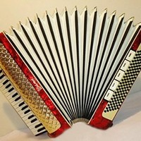 Weltmeister 120 Bass + Case. 15 Registers Piano Accordion. German Accordian. 187