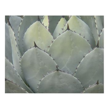 Prickly Succulent Plant Panel Wall Art