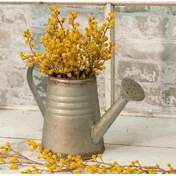 Vintage-style Galvanized Watering Can