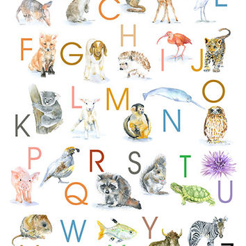 Animals Alphabet Poster - Portrait