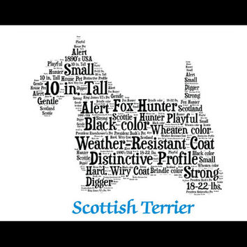 Scottish Terrier,Scottish Terrier Art, Scottish Terrier Artwork, Scottish Terrier Print, Custom, Personalize, Pet Gift, Print, Pet Memorial