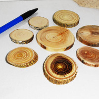 Wood Slices - 8 Sanded Blank Tree Branch Slices - DIY - Wedding Decor - Craft Supplies - Jewelry Supplies - Ornament Supplies - Wooden Toy