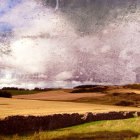 Autumn in Scotland, Autumn Photography, Scotland Art, Fall Colors, Landscape Print, Earthy Brown, Blue, Amethyst Purple, Cameo Brown, Gold