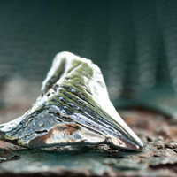 Sterling Silver Megalodon Shark Tooth Pendant