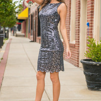 Better Than Shine Dress, Gray