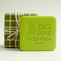 Big Pine Mountain Soap Green Plaid