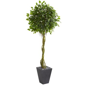 6' Ficus Artificial Tree in Slate Planter UV Resistant (Indoor/Outdoor)