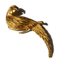 Large JJ parrot brooch in matte and satin gold finish Jonette Jewelry