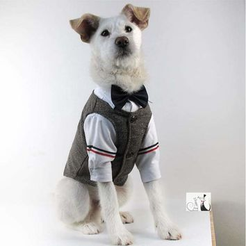 Dapper Dog Two-Piece Wool Suit