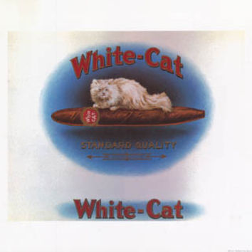 White Cat Cigar Store Art Poster 16x20