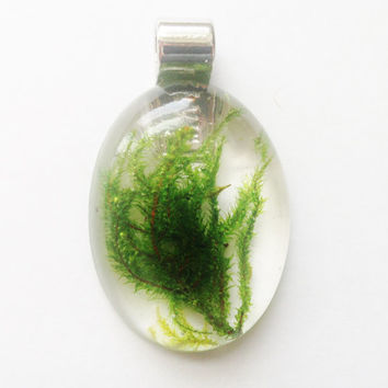 Green Moss Pendant, Real Preserved Moss in Clear Resin Jewelry