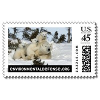 Polar Bear Family Postage Stamps from Zazzle.com