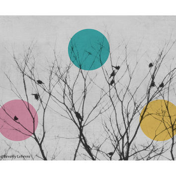 nature, birds, trees, winter, modern, art, fine art photography
