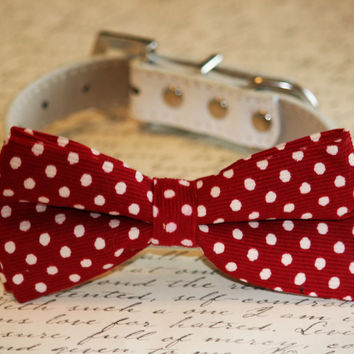 Red polka dots Dog Bow tie, Christmas, Valentine's Day, Wedding dog accessory