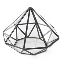 Diamond Glass Terrarium