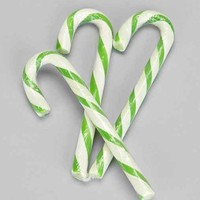 Pickle Candy Cane - Set of 6- Assorted One