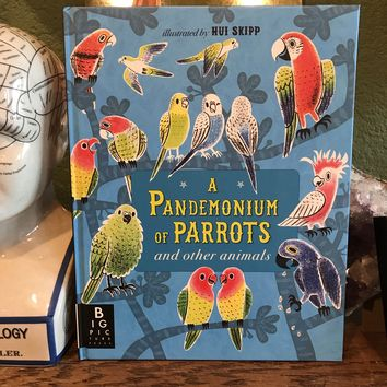 A Pandemonium of Parrots & Other Animals by Hui Skipp