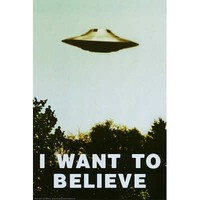 The X-Files - I Want To Believe TV Poster Print
