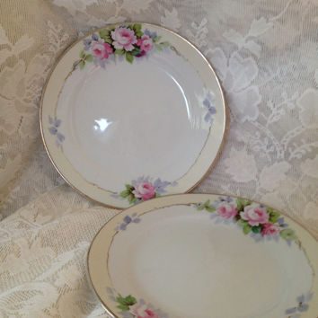 Nippon 2 Hand Painted Plates Rising Sun Blue Mark Roses Pale Yellow Banded Underglaze Made in Japan 1921 thru 30s