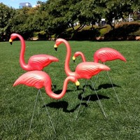 Clothes Online | FLAMINGOS FOREVER - HOMEWARES - BAZAAR