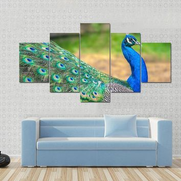 5 Piece set Canvas Art Walking Peacock HD Canvas Paintings Decorations For Home Wall Art Prints Canvas