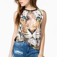 In a Dream Tiger Tank