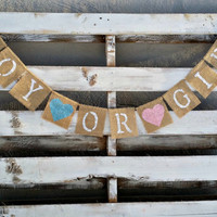 Gender Reveal Burlap Banner, Baby Shower Decor, Boy or Girl Banner, Photo Prop