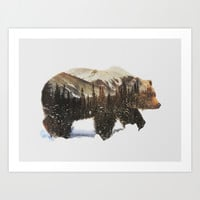 Arctic Grizzly Bear Art Print by Andreas Lie