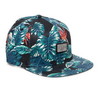 10 Deep: Gold Standard Hat - Black Elephant