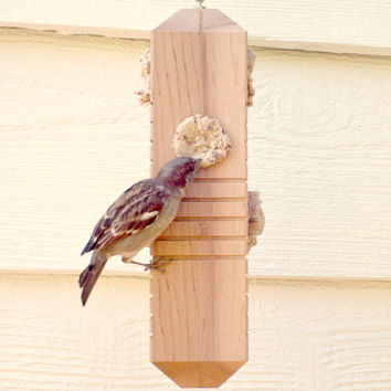 Wooden Bird Feeder Woodpecker Feeder from Recycled Cedar