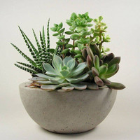Concrete  Bowl - Light Grey