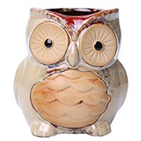 Greencherry Ceramic Cartoon Owl Planter Porcelain Animal Flowerpot Creative Plant Container for Decoration