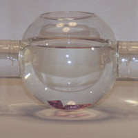 Unique Fish Bowls - OpulentItems.com