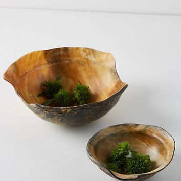 Reclaimed Horn Bowl Set