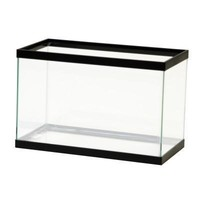 Aqueon 5.5 Gallon Aquarium Black Trim Fish Tank 16X8X10