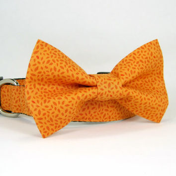 Autumn  Leaflets Dog Collar with bow tie set  (Mini,X-Small,Small,Medium ,Large or X-Large Size)- Adjustable