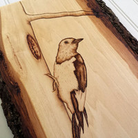 Rustic Wood Art Woodpecker, Pyrography Bird Art Wooden Art North American Bird Wall Hanging